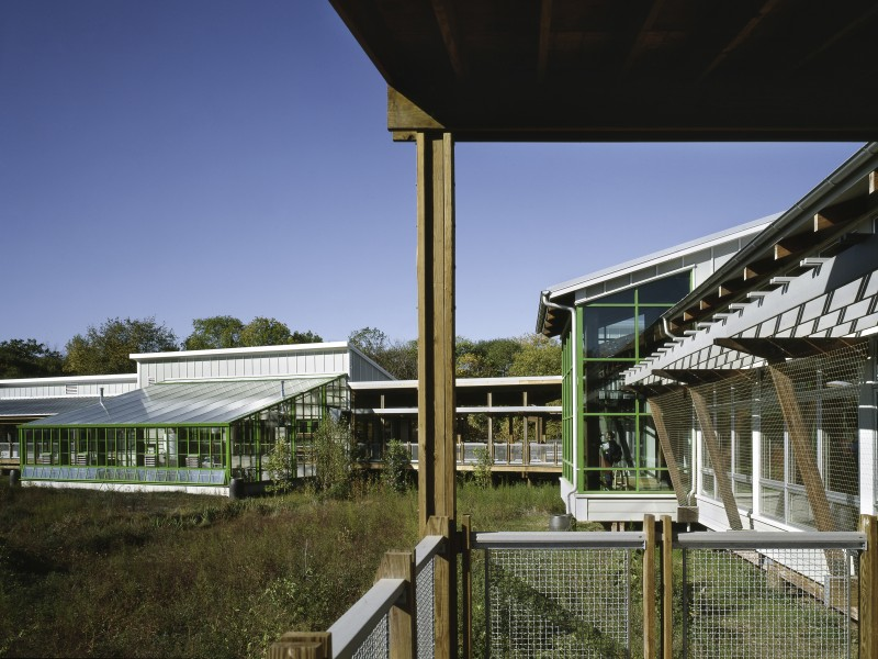 Exterior image from the entrance of Cusano Center and native marshland that makes up its landscape